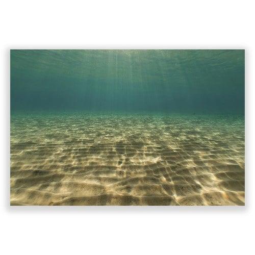 美國TwoPalms 海洋潛水掛畫 (玻璃、114公分)