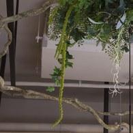 荷蘭Emerald人造植物 綠色野莧草 (4株)